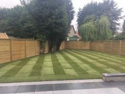 Lawn seeding - Essex